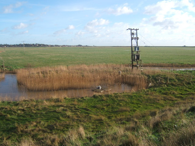 Aldeburgh Marsh from West Row Point