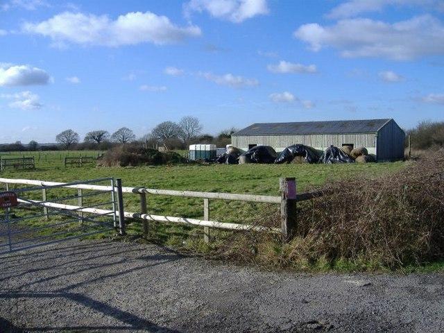 Quelly's farm