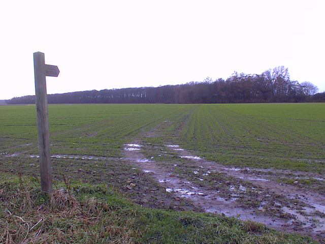 Footpath to Tadcaster