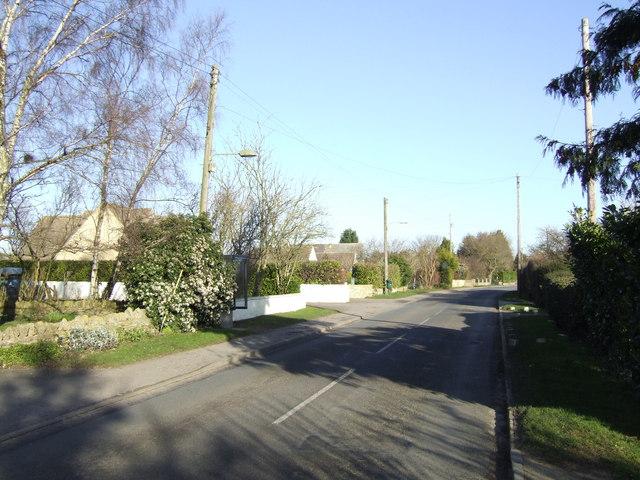 Main Road, Bushey Ground