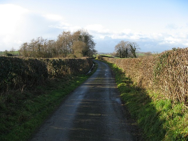 The Road To Dolanog