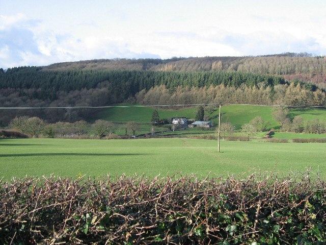 Farmland And Forest