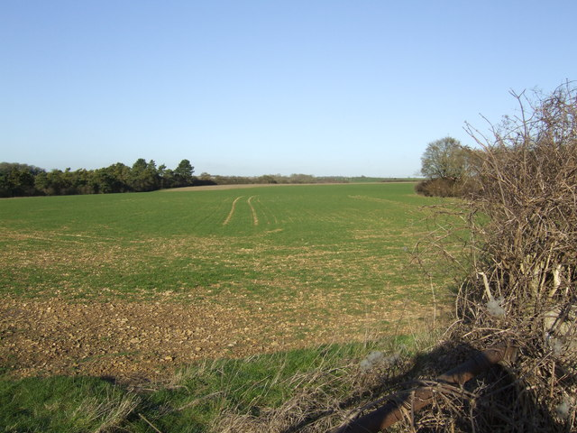 Oxfordshire arable field