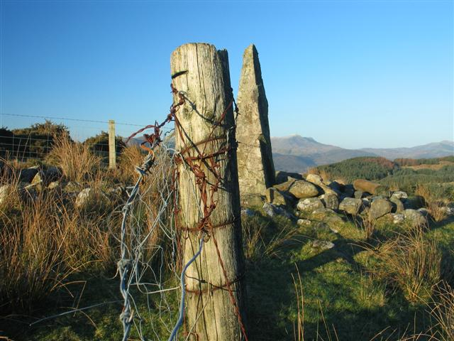 Standing Stone and modern fence