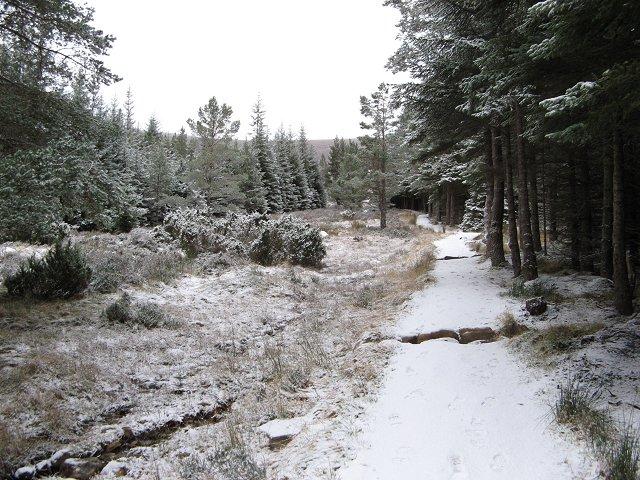 Path up Meall a' Bhuachaille