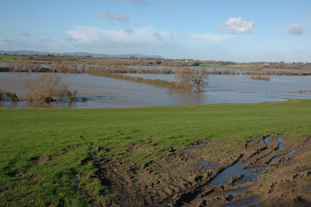 The flooded river Avon at Bredon's Hardwick