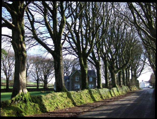 Links Tor House