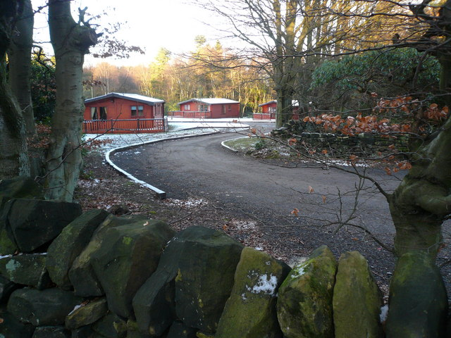 Darwin Forest Holiday Chalets - Viewed from Forty Acre Wood