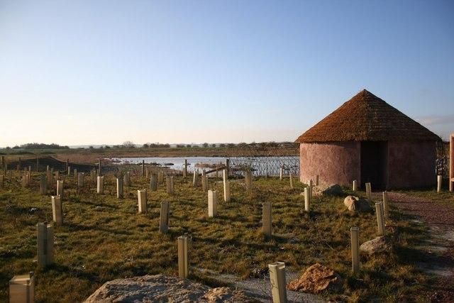 Fiskerton Fen Nature Reserve