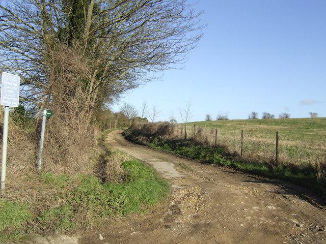 Milking Lane