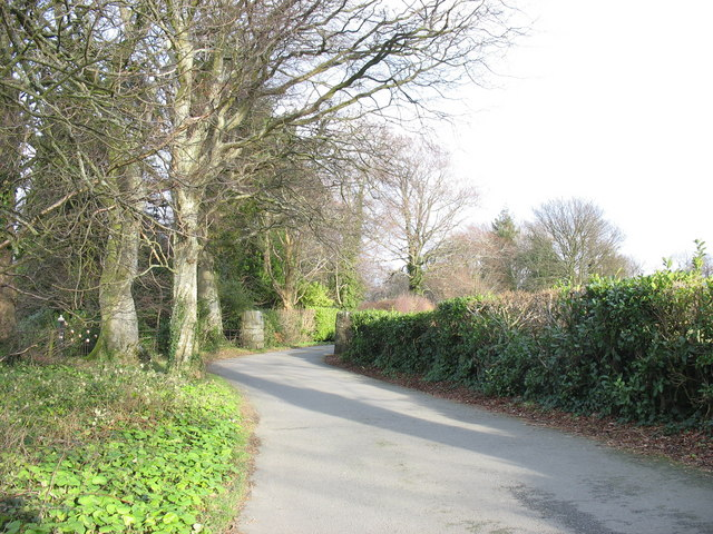 The driveway leading to Llwyn y Brain and Seiont Manor .