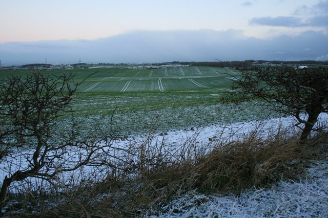 Fields Near Crookers Hill