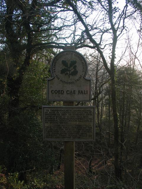 Coed Cae Fali National Trust Sign