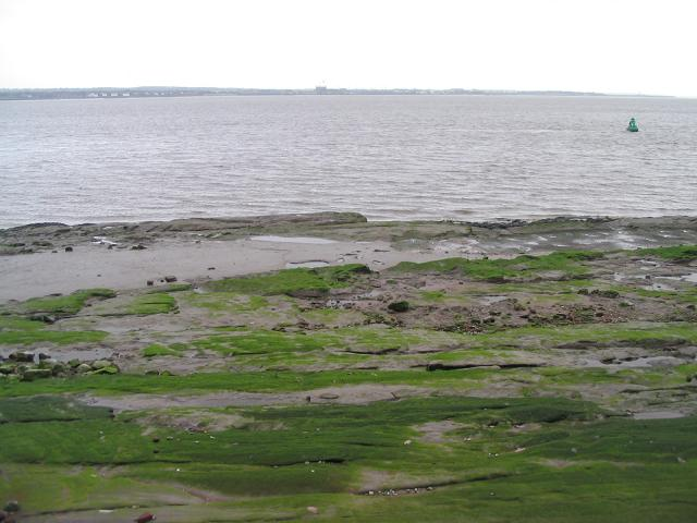 Sandstone shore near Bromborough