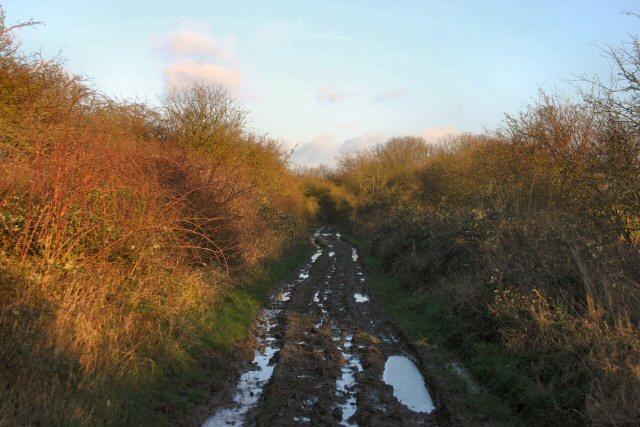 Bury Road, Witcham