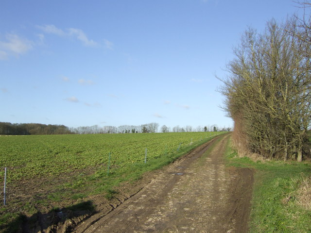 Footpath to Minster Lovell