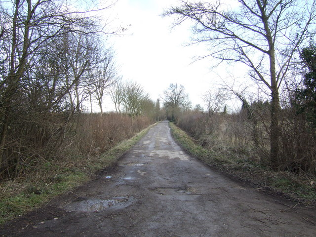 Unnamed track into the marshes