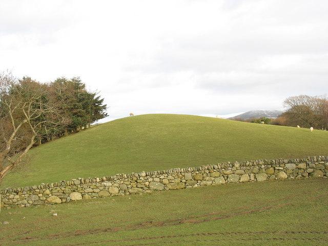 A drumlin on the Llwyn y Brain estate