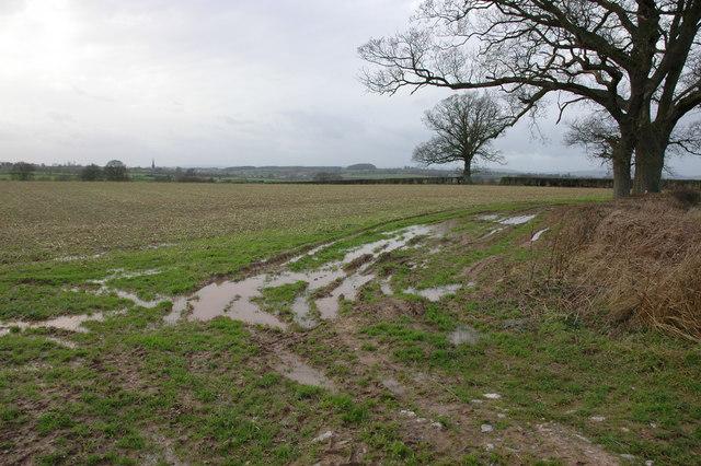 Farmland near Little Stock