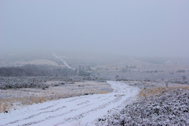 Vanguard Way in the Snow