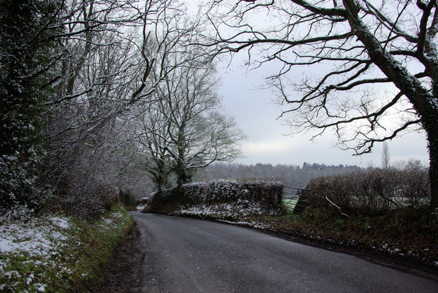 Chillies Lane on a Chilly Morning