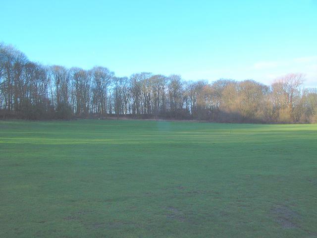 The Meadow, Billinge