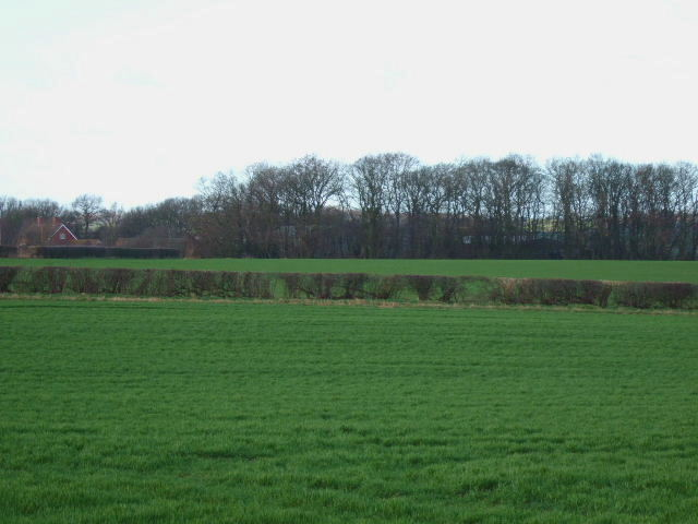 Covert Farm