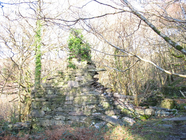 Ruins of the old woollen mill at Bedw Argoed