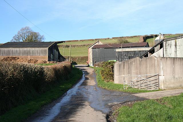 Bishop's Nympton: barns at Reach