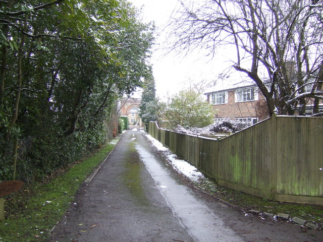 Drive behind houses on Ashurst Road