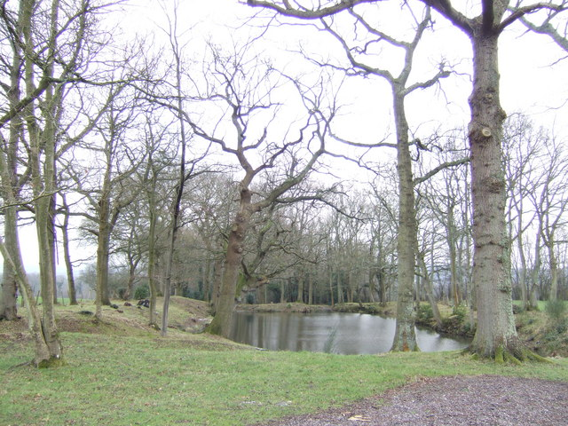 Pond off Fowly Lane