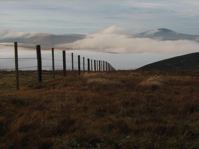Fence on Hunt Law