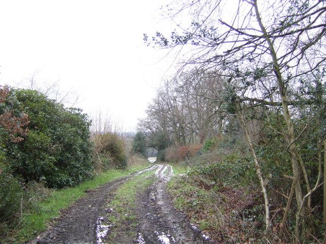 Wealden footpath