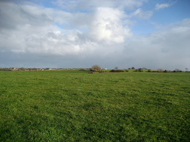 Large Field North of Easington