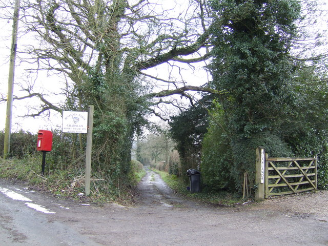 Track to Rumsden Farm