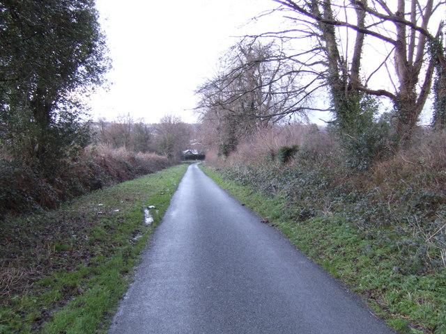 Birchden Lane looking north