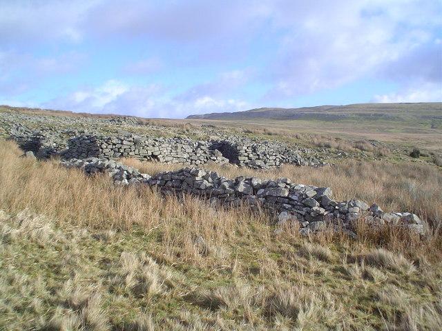 Ancient stone-walled enclosures