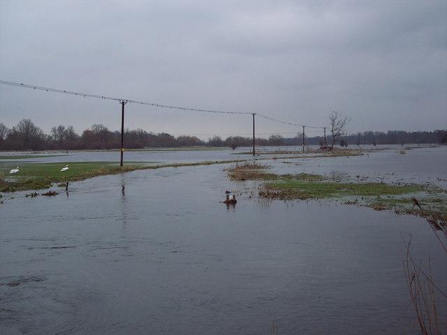 Flooded Avon Valley near Harbridge