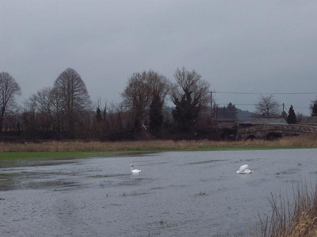 Floods at Ibsley Bridge