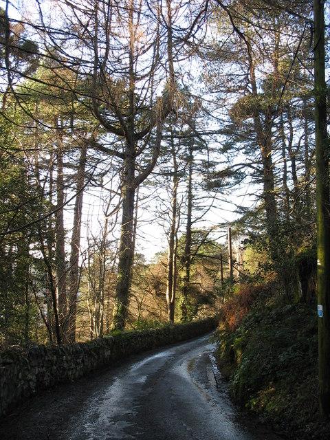 Lon Fachwen - Fachwen road