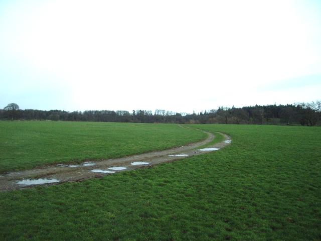 Track to Wax Pool