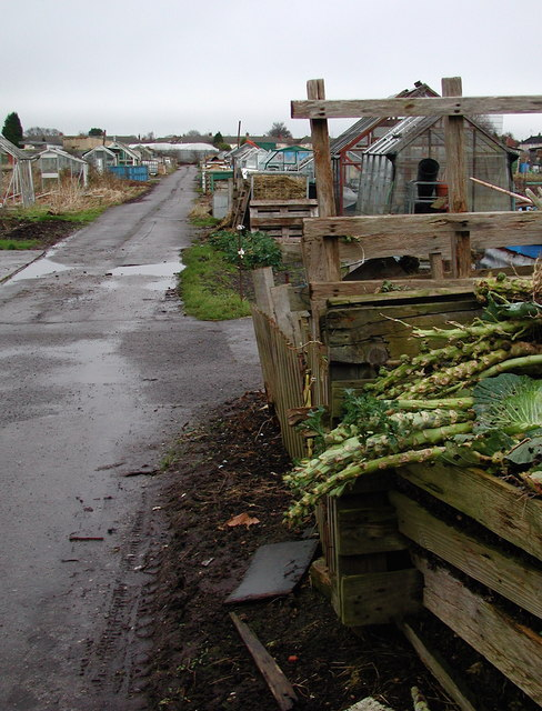 Mappleton Grove Allotment Site