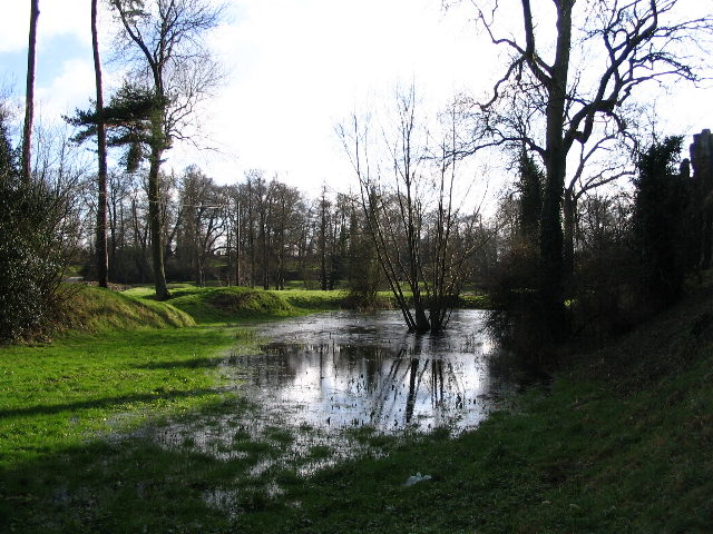 Pond by Kenilworth Castle
