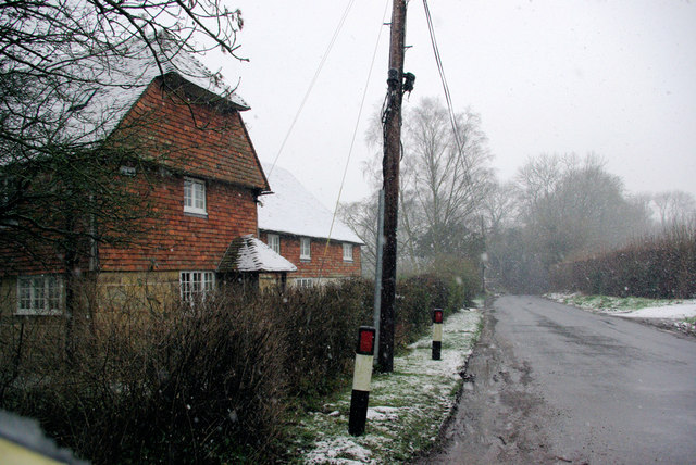 Cottages, Lyewood Common