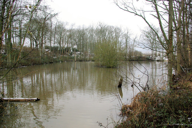 Pond in the Wadhurst Clay