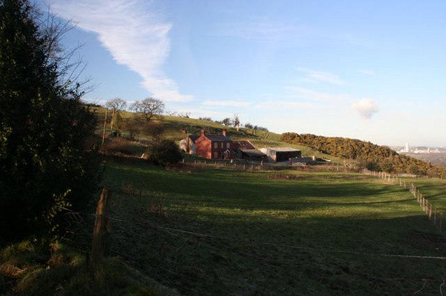 Pant Farm