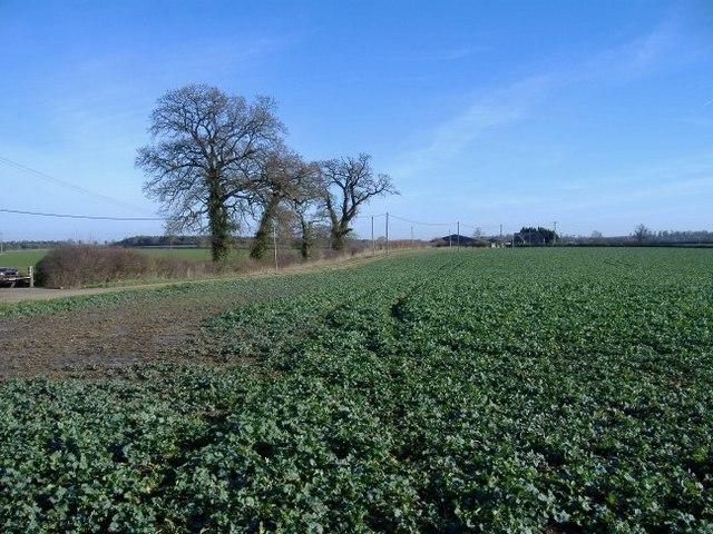 Quobwell farm