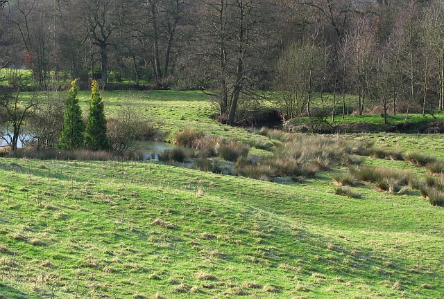 Bradbourne Brook