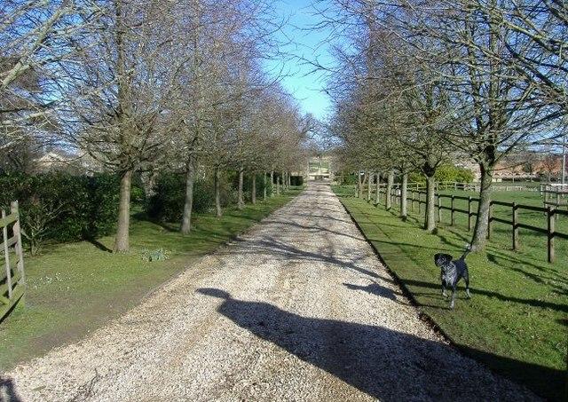 Newnton House driveway