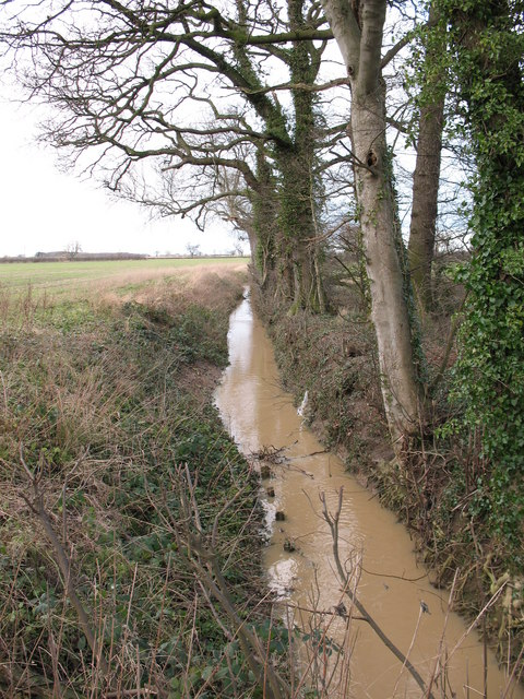 Nell Beck, Ellenthorpe Lane